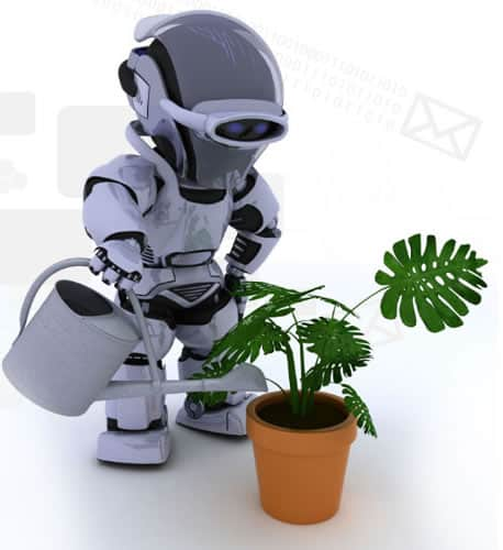 Hybrid robo advisor a watering plant dipicting automation makes life easier.